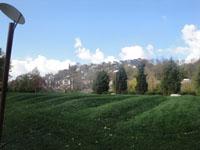 Cincinnati hills from Theodore M. Berry International Friendship Park