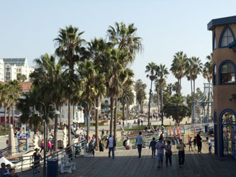 Santa Monica Pier, California Palm Trees