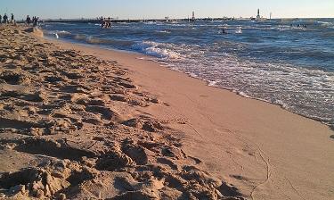 Holland State Park Beach. Plenty of sand and beautiful shoreline.