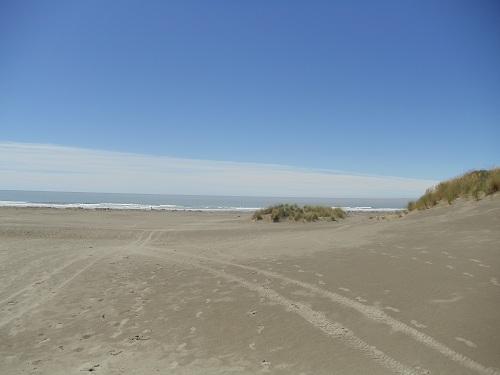 The Pines Beach - Christchurch, New Zealand
