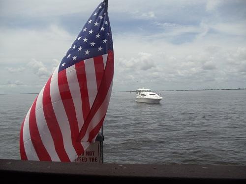 My 7 Super Shots - Charlotte Harbor, Punta Gorda, Florida