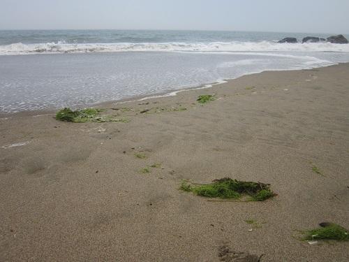 Baker Beach, San Francisco, California