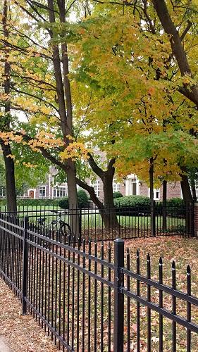 Michigan, fall leaves, Autumn