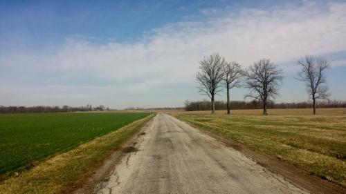 Wyandot County, Ohio, rural country road