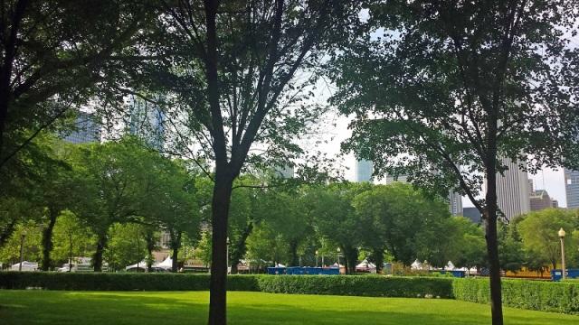 Grant Park, Chicago, skyline, Buckingham Fountain