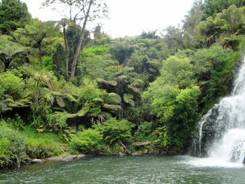 Owharoa Falls, Waihi, New Zealand, waterfall, North Island