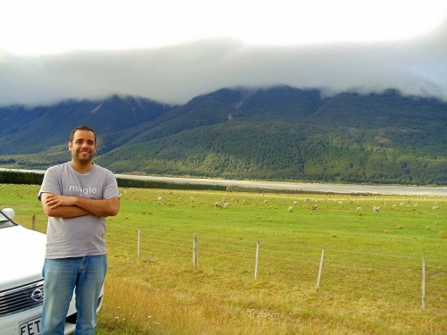 Mngling with the sheep, South Island, New Zealand road trip
