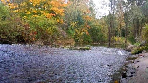 Parker Mill County Park, Autumn color, fall foilage, Ann Arbor, Michigan
