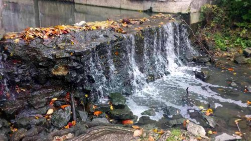 Side Cut Metropark, Maumee, Ohio, Autumn, fall colors
