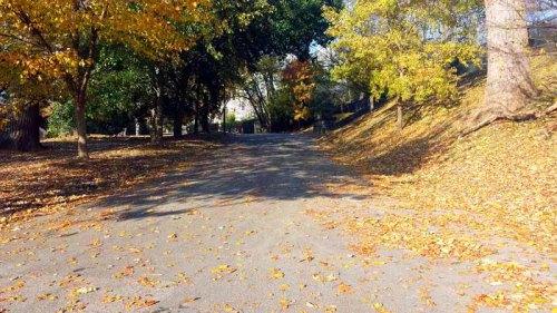 Autumn, Piedmont Park, Atlanta, Georgia, ATL