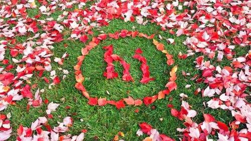 Findlay, Ohio, Autumn Colors, Discover Ohio