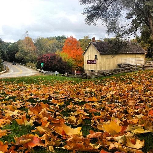 Parker Mill County Park, Ann Arbor, Michigan
