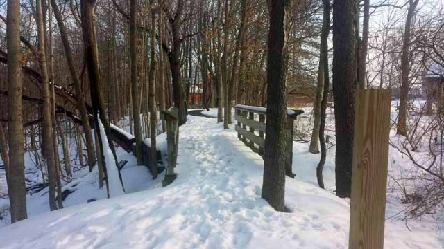 Litzenberg Memorial Woods, winter, Findlay, Ohio