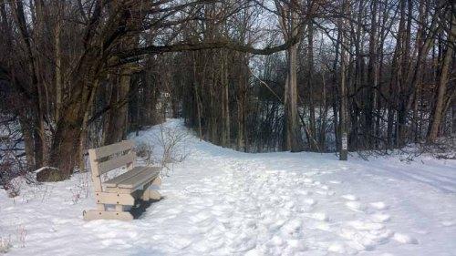 Litzenberg Memorial Woods, winter, Findlay, Ohio