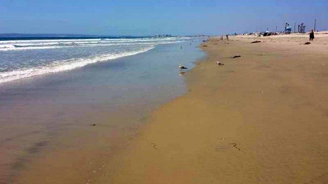 Silver Strand State Beach, Coronado, California