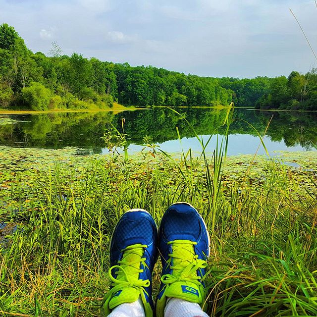 Frifotos - Solitude - Seven Lakes State Park, Michigan
