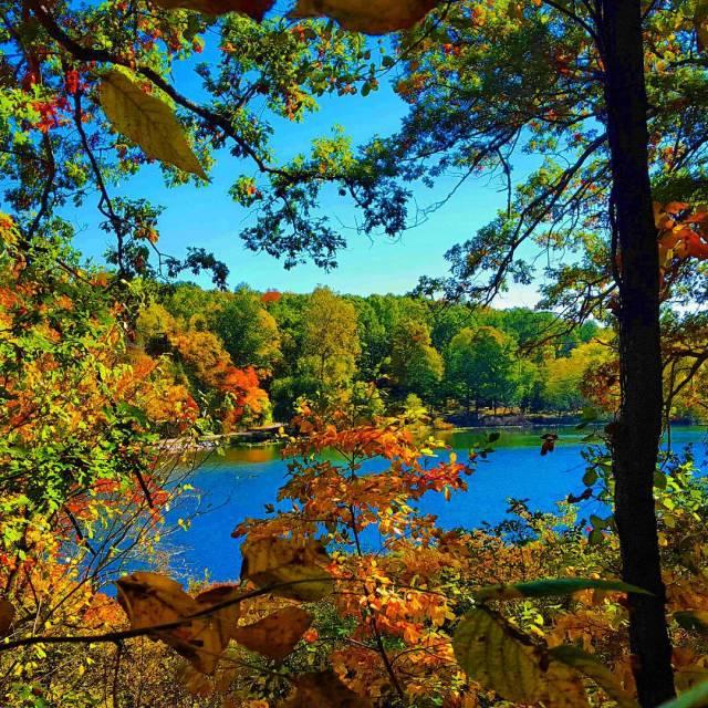 Autumn at Hidden Lake Gardens, Michigan
