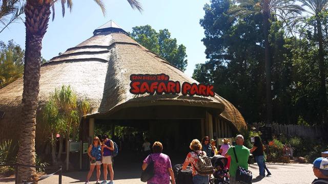 San Diego Zoo Safari Park, Escondido, California