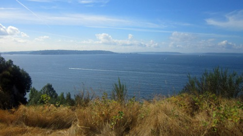 Puget Sound from the Magnolia Boulevard and neighborhood in Seattle