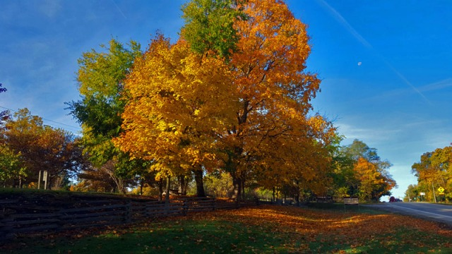 Ann Arbor - The 2016 Edition of Autumn in Pure Michigan
