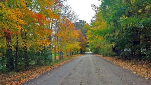 The 2016 Edition of Autumn in Pure Michigan