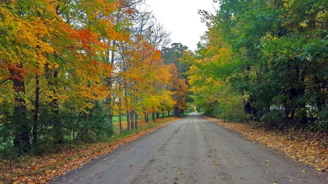 The 2016 Edition of Autumn in Pure Michigan