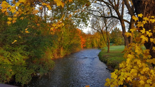 Hines Drive - The 2016 Edition of Autumn in Pure Michigan