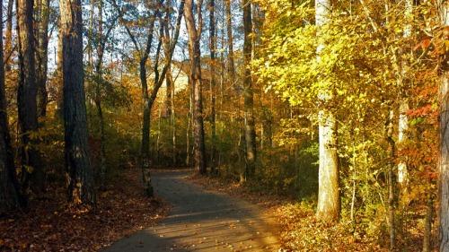 Suwanee Creek Greenway in Georgia