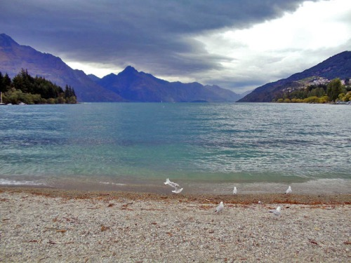 Queenstown beach, Lake Wakatipu - Favorite New Zealand Beach shots