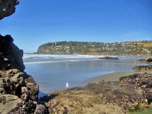 Sumner Beach in Christchurch - Favorite New Zealand Beach shots