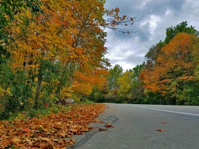 Pure Michigan Autumn 2017 - Hines Drive in Metro Detroit