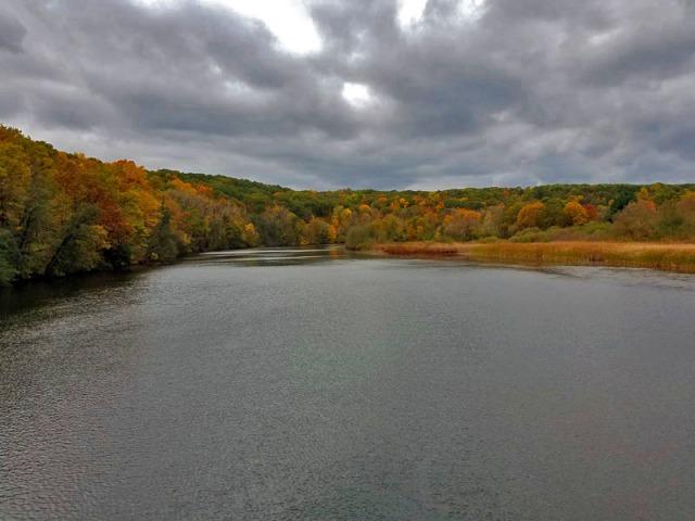 n 2017 - Barton Nature Area, Huron River, Ann Arbor
