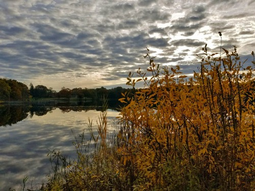 Pure Michigan Autumn 2017 - Brighton State Recreation Area