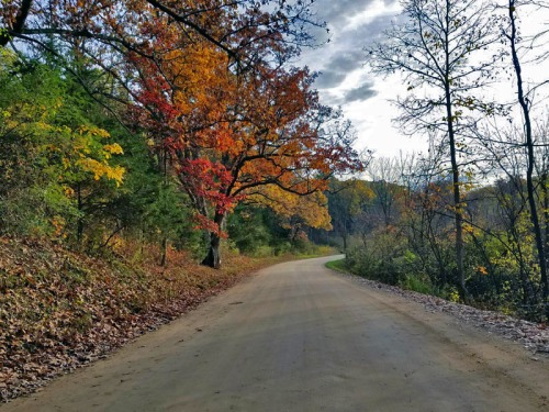 n 2017 - Out on the open Livingston County dirt road