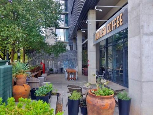 Condesa Coffee, Old Fourth Ward, Atlanta coffee shop