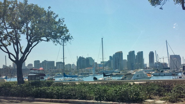Sailboats guarding the San Diego skyline