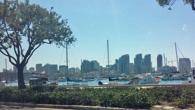 Sailboats guarding the San Diego skyline