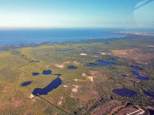 Charlotte Harbor Preserve State Park in Punta Gorda, Florida