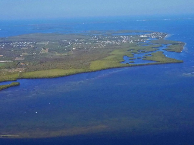 Pine Island near Bokeelia, Florida