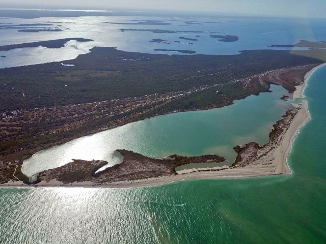 Cayo Costa Island, Florida along Gulf of Mexico.