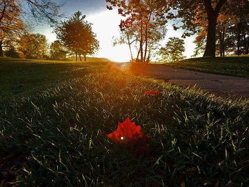Kensington Park, Milford, Michigan