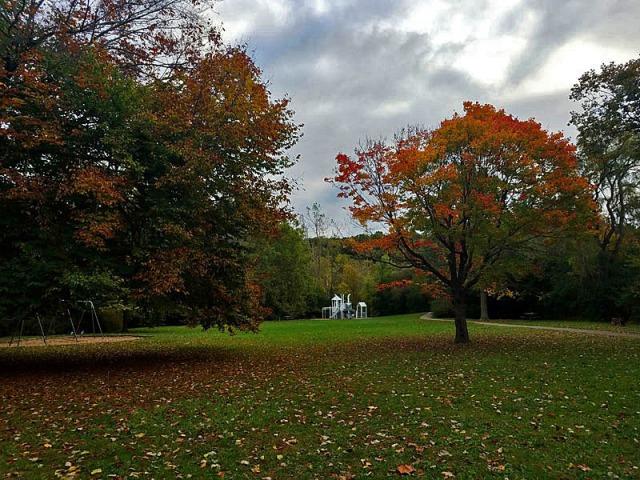 Island Park, Ann Arbor