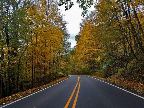 Fall Roadtrip along Huron River Drive in Ann Arbor