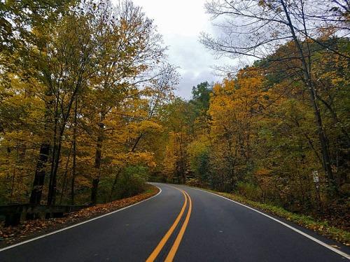 Fall Roadtrip along Huron River Drive in Ann Arbor, Michigan