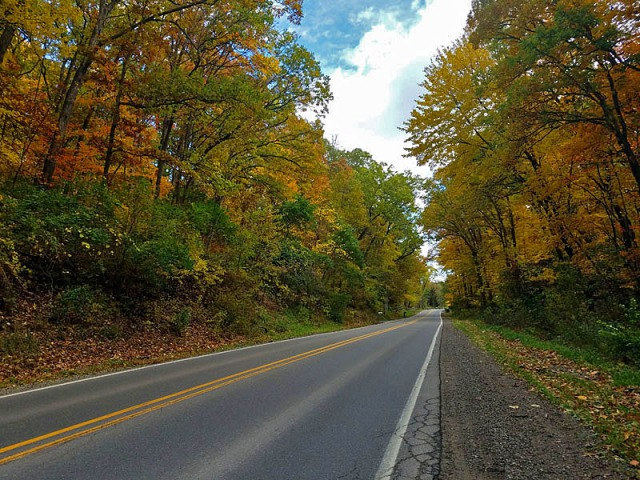 Pure Michigan fall colors coming to life in Livingston County