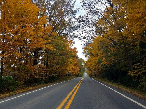 Out on the open Pure Michigan Fall color trail, road trip