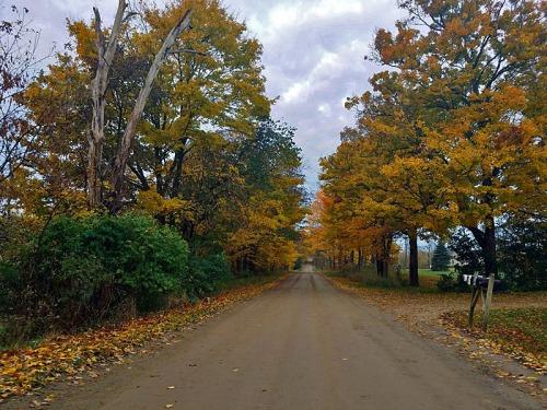 Random Washtenaw County dirt road Fall color exploration