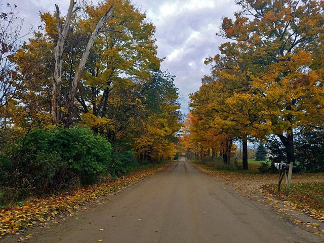 Random Washtenaw County dirt road Fall color exploration