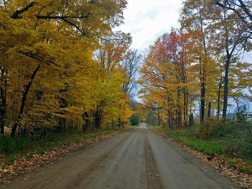 Dirt road Fall color exploration