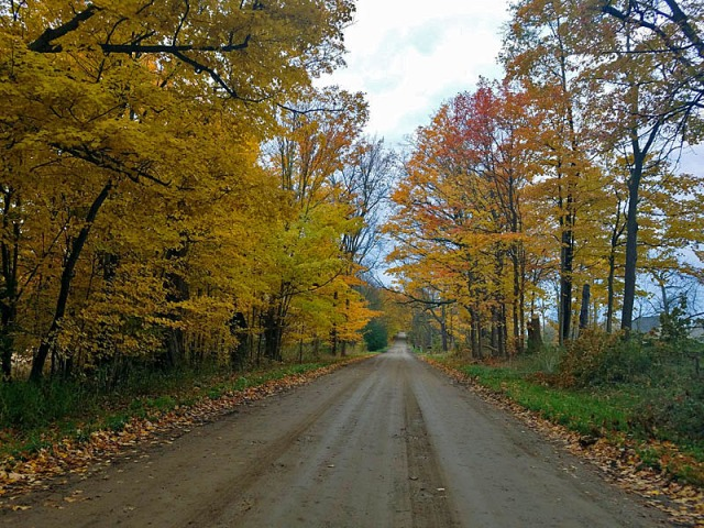 Dirt road Fall color exploration